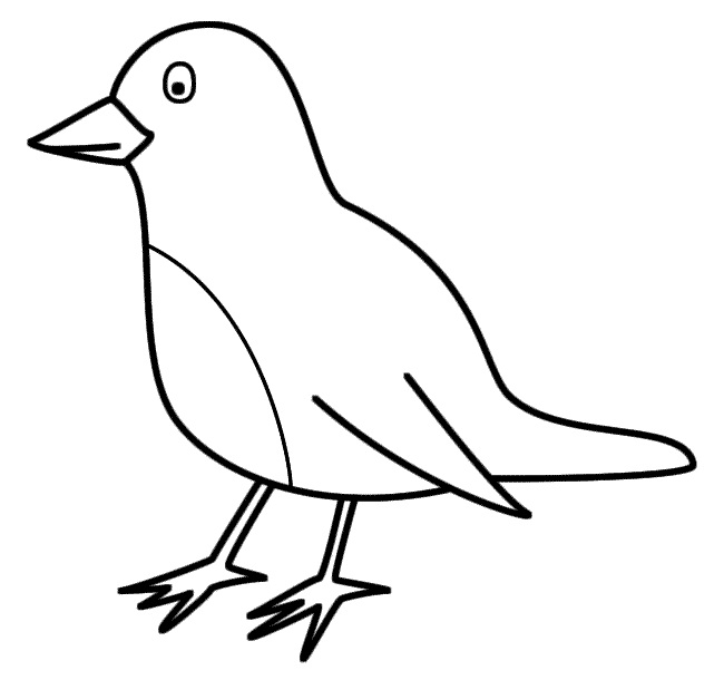 Printable coloring pages of parrots birds printable best for Bird coloring pages to print