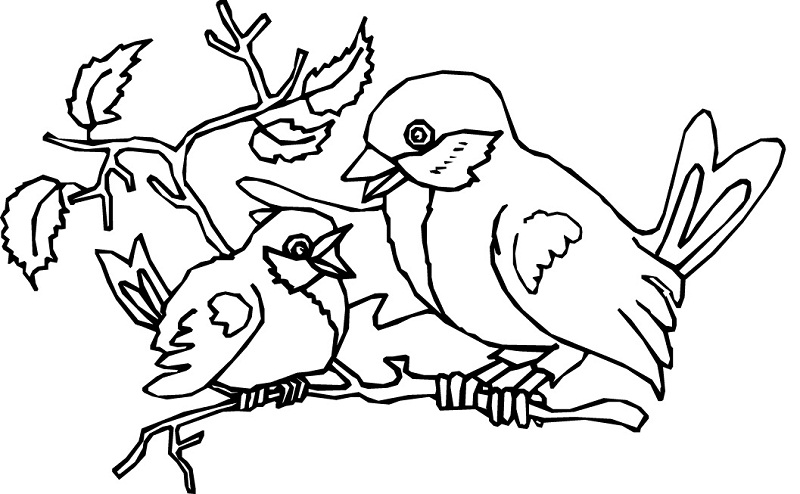 Printable Bird Coloring Pages | Coloring Me