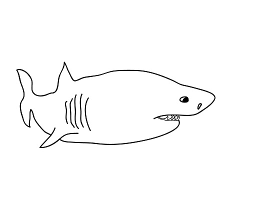 shark fin coloring pages worksheet coloring pages felt shark fin printable shark coloring pages coloring