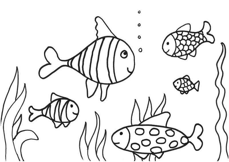 Printable Fish Coloring Pages | Coloring Me