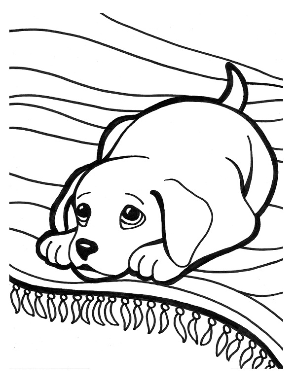 best puppy coloring sheets with dog breed coloring pages