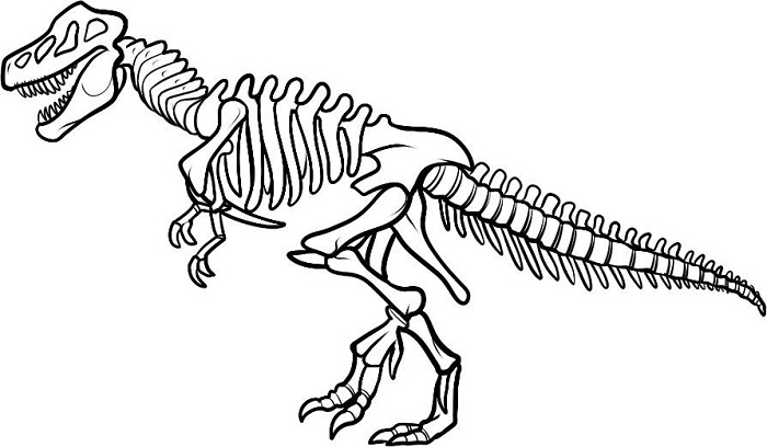 Dinosaur Bones Coloring Pages