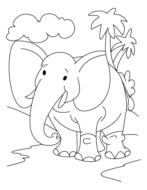 Jungle Animals Coloring Pages Preschool : Printable elephant coloring pages me