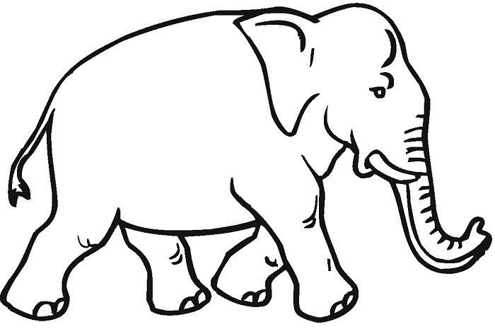 graphic about Printable Elephant Pictures identify Printable Elephant Coloring Webpages