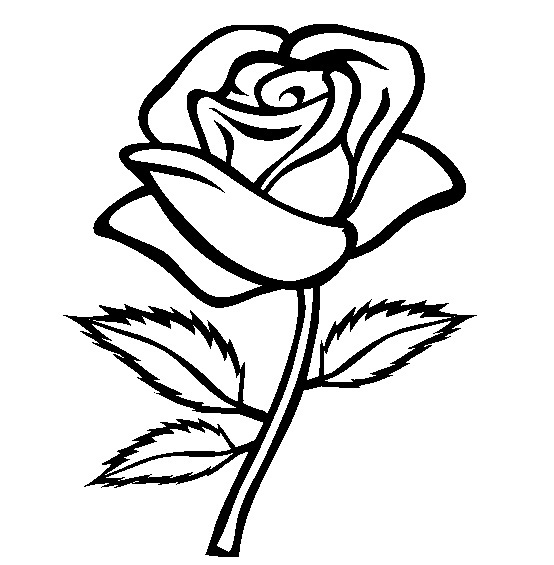 printable flowers coloring pages me