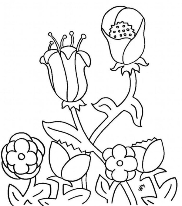 Preschool flowers coloring pages for Flower coloring pages for preschoolers