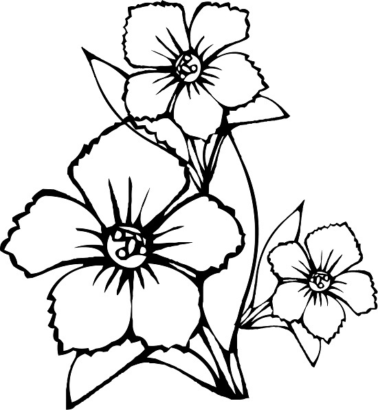 image about Printable Flowers to Color referred to as Printable Bouquets Coloring Web pages
