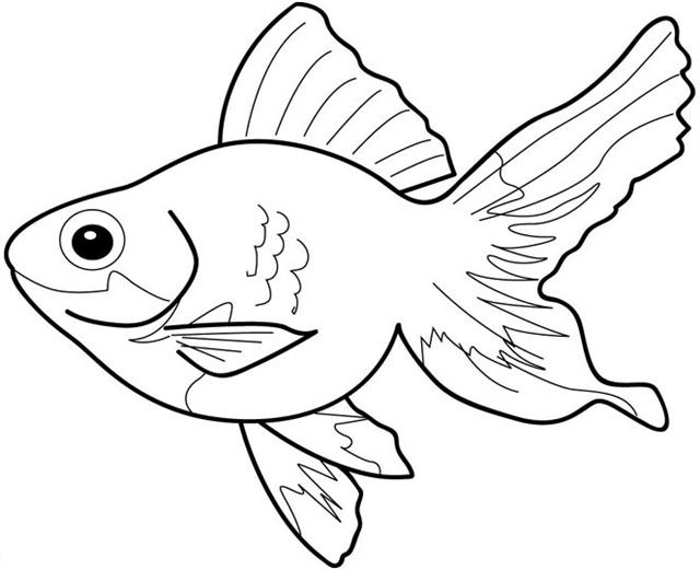 Free Coloring Pages Fish