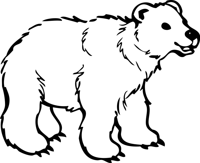 jungle animal coloring pages - Jungle Animal Coloring Pages