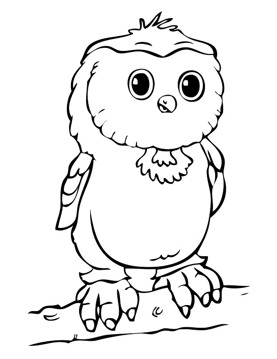 Owl Coloring Pages To Print Coloring Coloring Pages