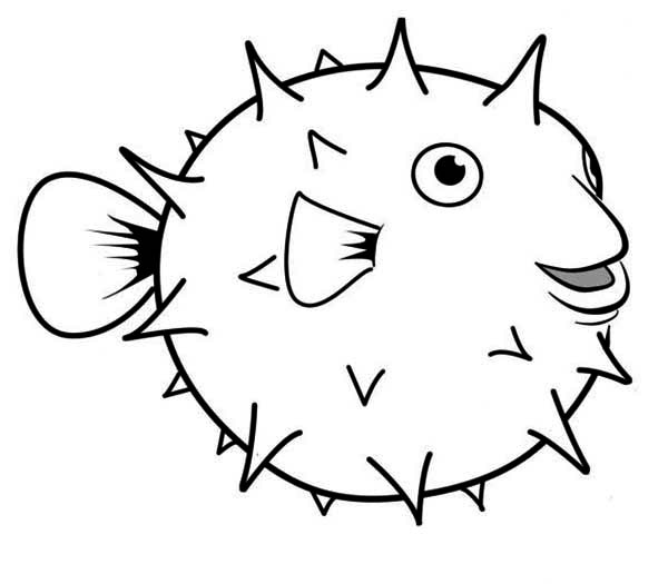 Coloring Book Pages Of Fish : Coloring pages fish. coloring book sheets of fish 025.