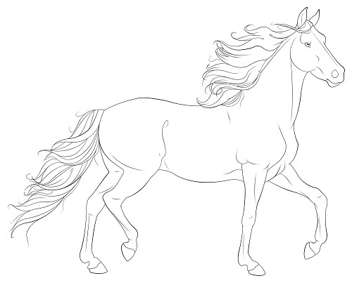 - Printable Horse Coloring Pages ColoringMe.com