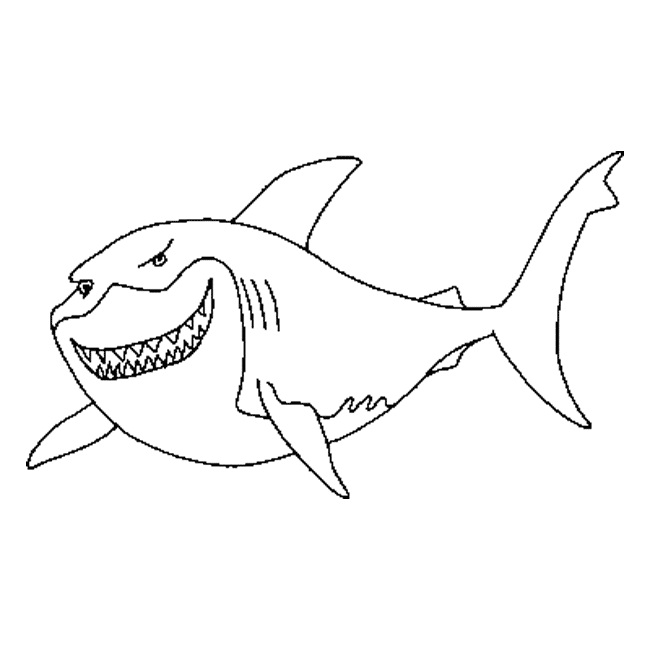 sharks coloring page shark pages