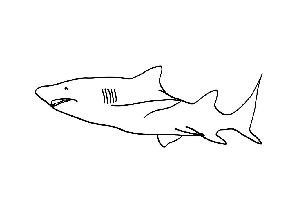 Printable Shark Coloring Pages | Coloring Me