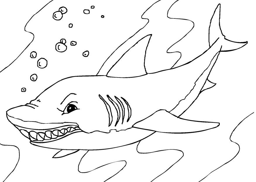 Printable Shark Coloring Pages Coloring Me Coloring Page Printable
