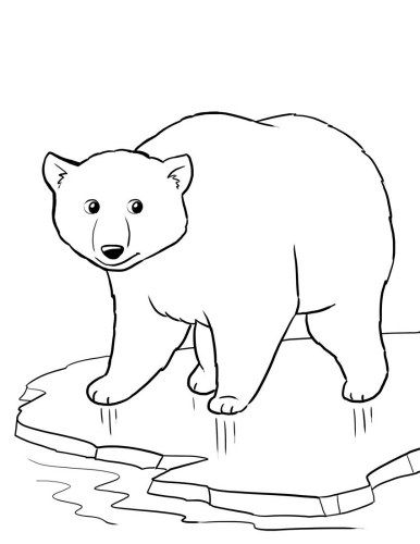 Printable Animal Coloring Pages Coloringme Com